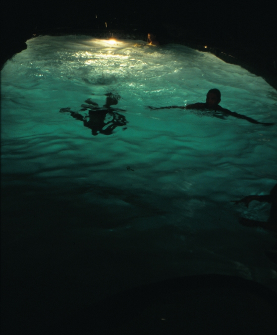 swimmers_4